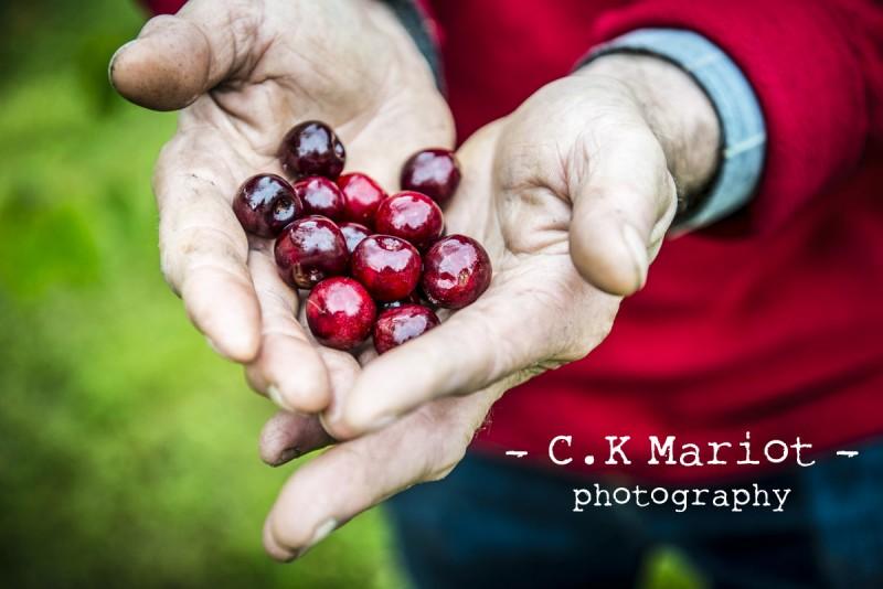 CK-Mariot-Photography-Itxassou-Fete de la cerise-0365