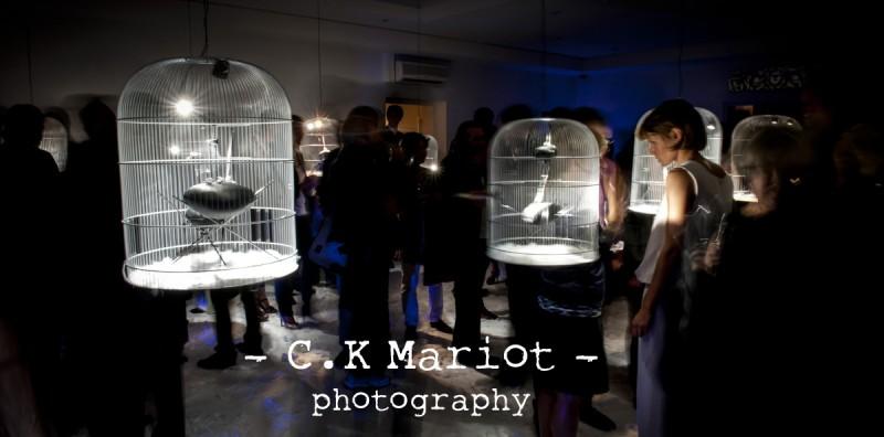 CK-Mariot-Photography-Kenzo-Takada-10Royale-0140