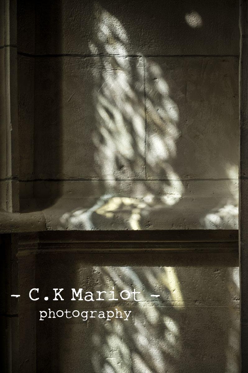 CK- Mariot -Photography-Palais-Benedictine-1581